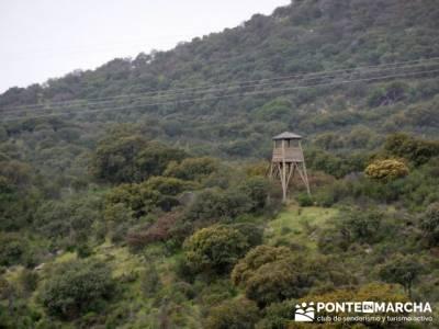 Senderismo Madrid - Pantano de San Juan - Embalse de Picadas; torrelaguna; botas de montaña